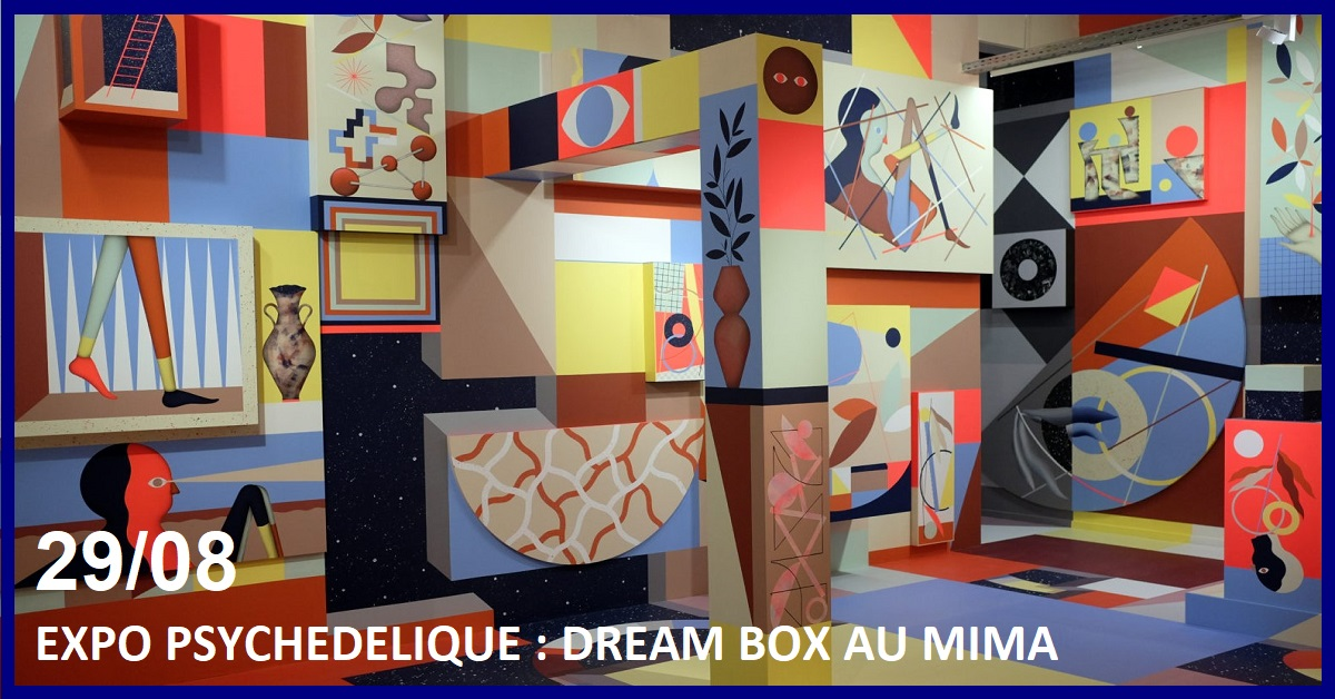 EXPO PSYCHEDELIQUE : DREAM BOX AU MIMA