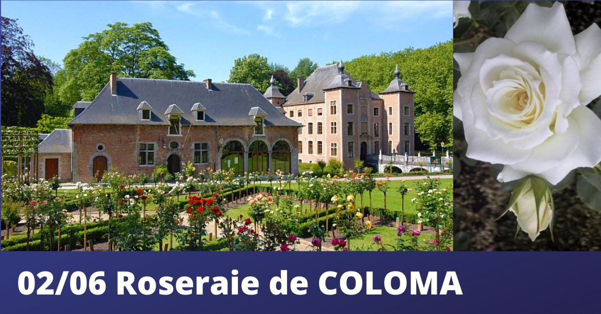SINT-PIETERS-LEEUW : DECOUVERTE GUIDEE DE LA ROSERAIE DE COLOMA