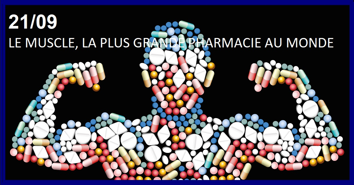 LE MUSCLE : LA PLUS FORMIDABLE PHARMACIE AU MONDE ! (GRATUIT)